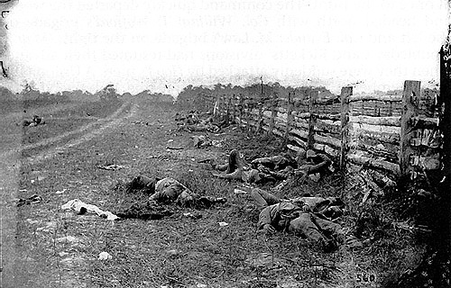 Confederate Dead at Battle of Antietam.jpg