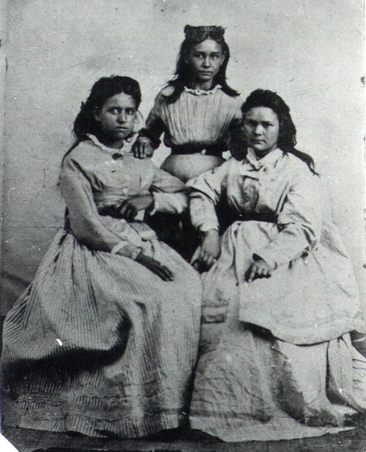 Daughters of Stand Watie.jpg
