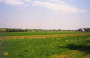 East Cavalry Field .jpg