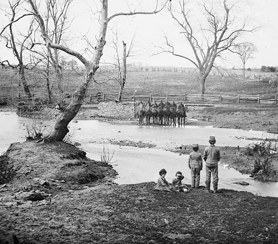 Union Cavalry at Bull Run.jpg