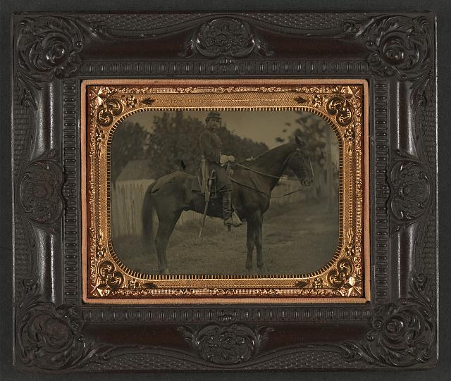 Civil War Cavalry Horse.jpg
